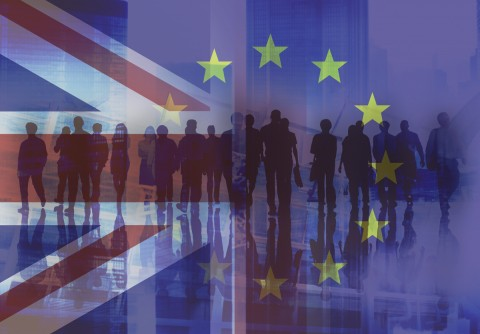 Brexit - a time to skill by Nick Ellins
