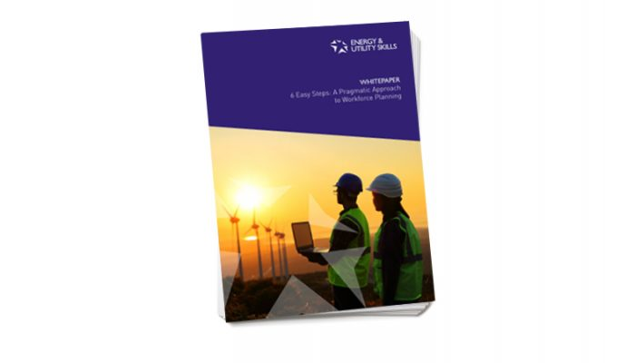 Whitepaper: 6 Easy Steps - A Pragmatic Approach to Workforce Planning